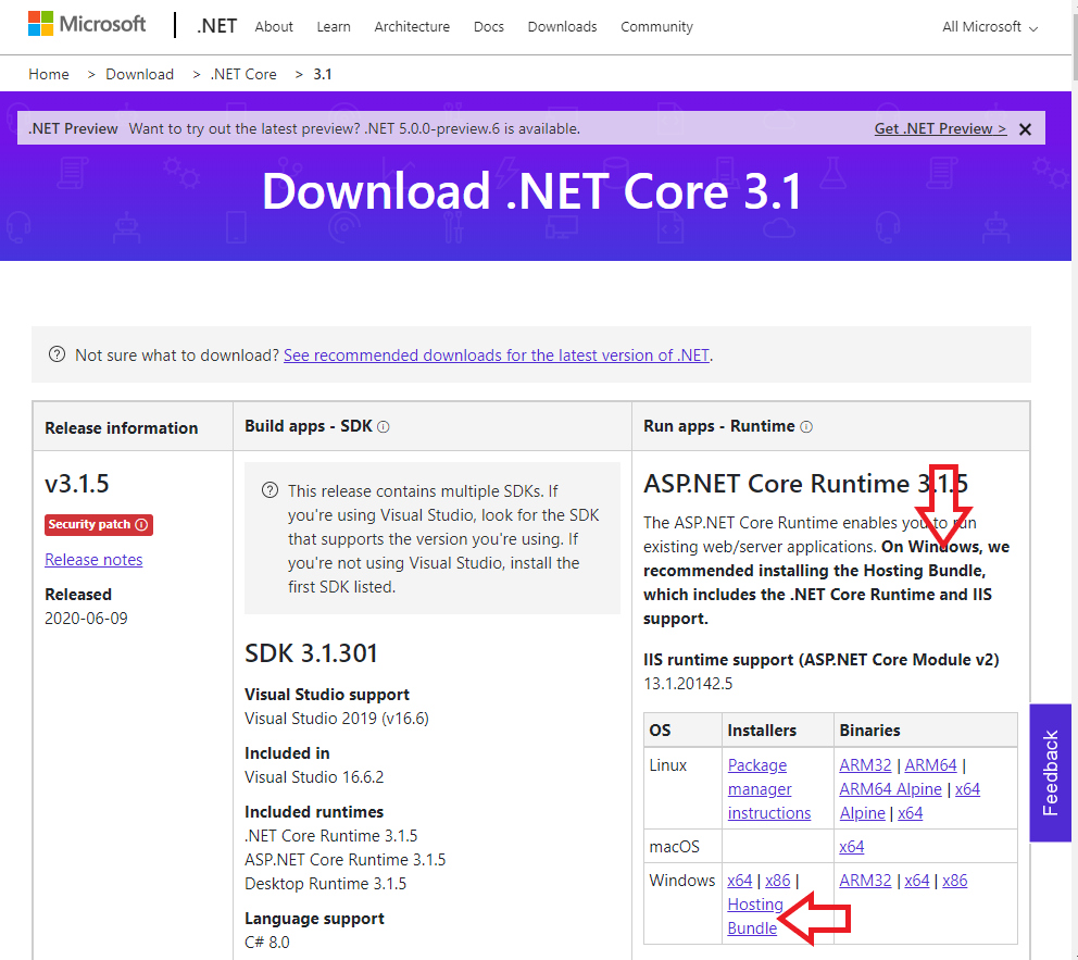 Download Windows Hosting Bundle for ASP.NET Core Runtime 3.1.5 to use with IIS